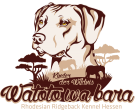 watoto wa bara Logo
